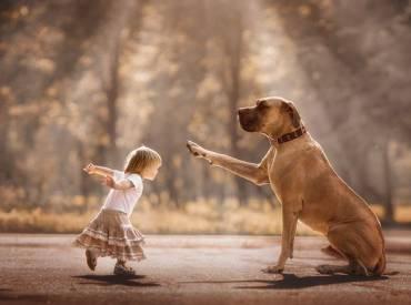 Copiii și câinii